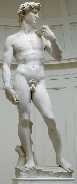 "The ideal male body? Art historians largely regard Michaelangelo's ""David"" (1501) as the world's greatest statue of a male body. Yet, despite its obvious superb artistic achievement, conflicting morals and viewpoints regarding nudity prevent many from appreciating its undeniable perfection as a work of art. (Photo: Wikipedia)"