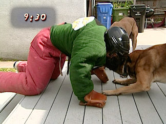 "Almost There! After her painful and unbelievable ""Dogs vs. Human"" wrestling match, Votava found she had to push the dogs out of the way through sheer WILL. (Photo: Syfy)"