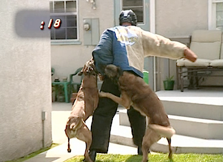 No Contest? Fellow contestant, Steel Chambers, was a man-mountain of muscle and the two dogs did little to slow his progress. At one point, he actually lifts both dogs as he marched across the yard! (Photo: Syfy)