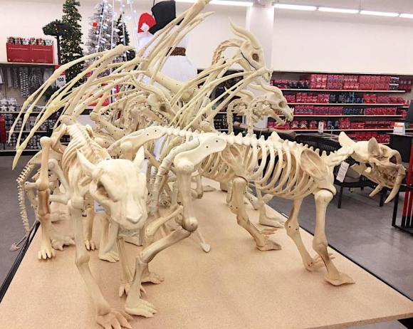 skeletons4