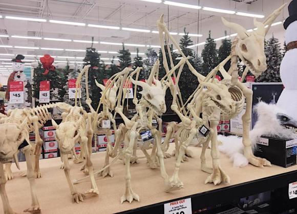 skeletons5